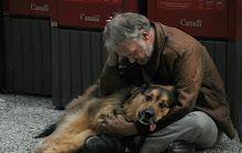 O Mendigo, ou O Cão Morto
