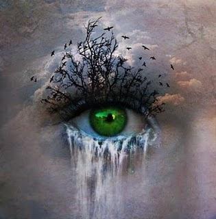 http://4.bp.blogspot.com/_zkh8bJAnhFs/TGIBXuOx3MI/AAAAAAAAAao/WYYEiO9n14k/s320/beautiful_pictures_of_640_25.jpg