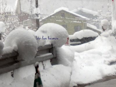 casa coberta de neve