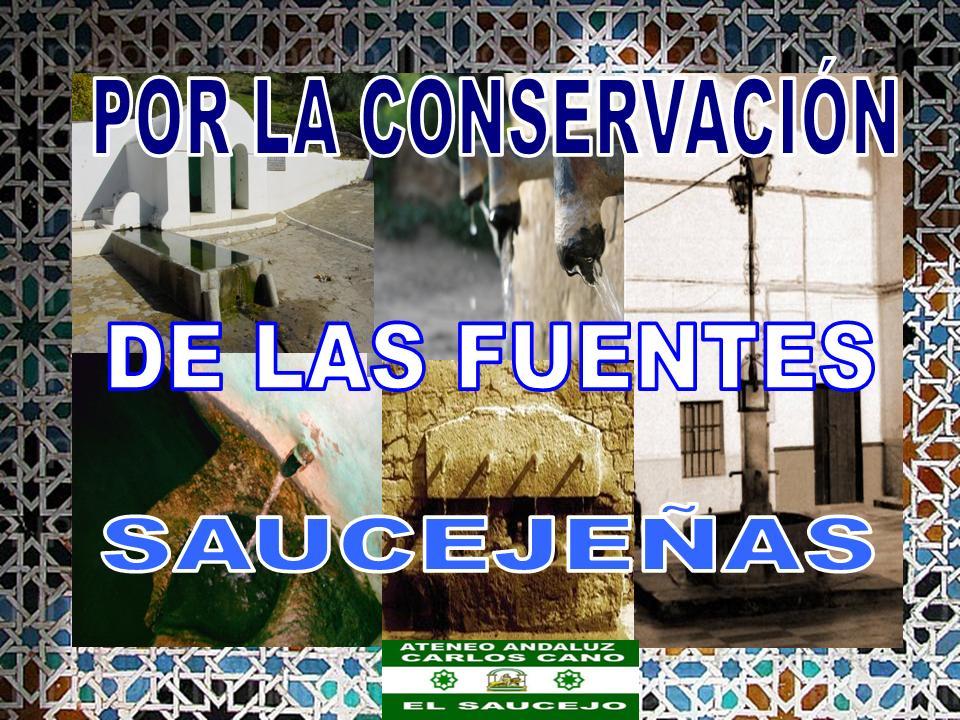 POR LA CONSERVACIÓN DE LAS FUENTES SAUCEJEÑA,.ATEN