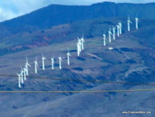 First wind's 20 wind Turbines as viewed from Wailea