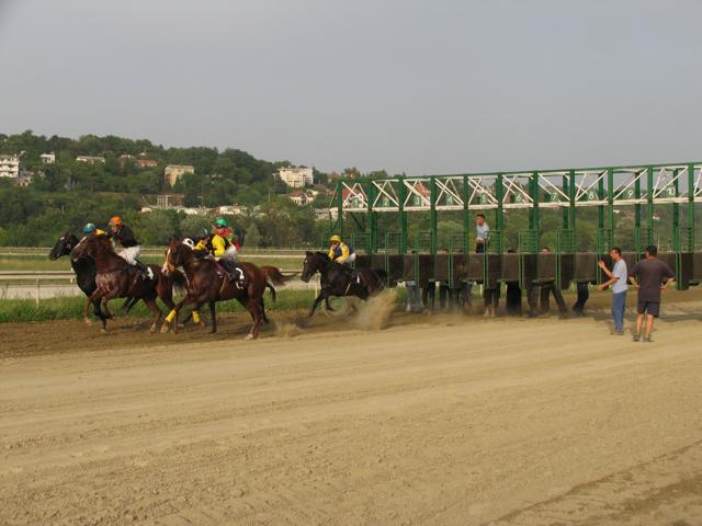 [BelgradeHippodrome.jpg]