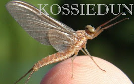kossiedun - the website