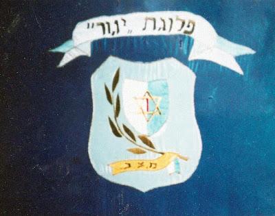 דגל פלוגת יגור