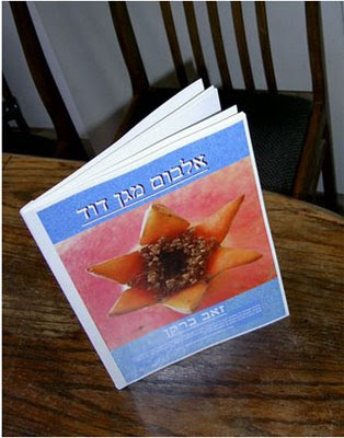 Star of David book
