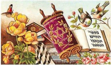 Torah-Cover-magen-david Jewish