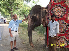 Brian with a baby Indian Elephant