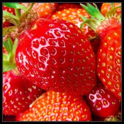 fraise_27_05_09.jpg