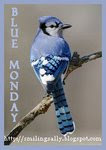 JOIN IN ON BLUE MONDAY