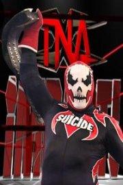 TNA X DIVISION CHAMPION