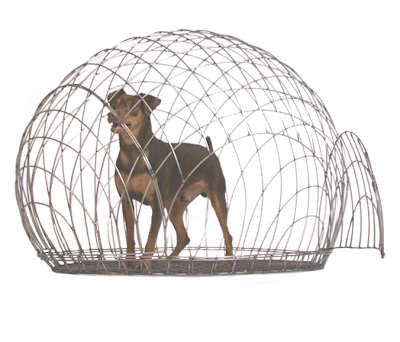 Peter Price Dog Breeding