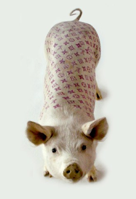 best Kawaii Plush ~ Super Cute Stuffed Animals