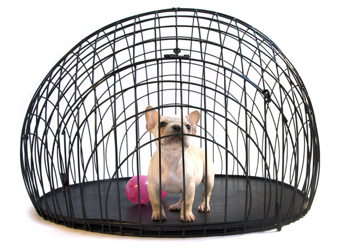Image Result For Dog Training Crate