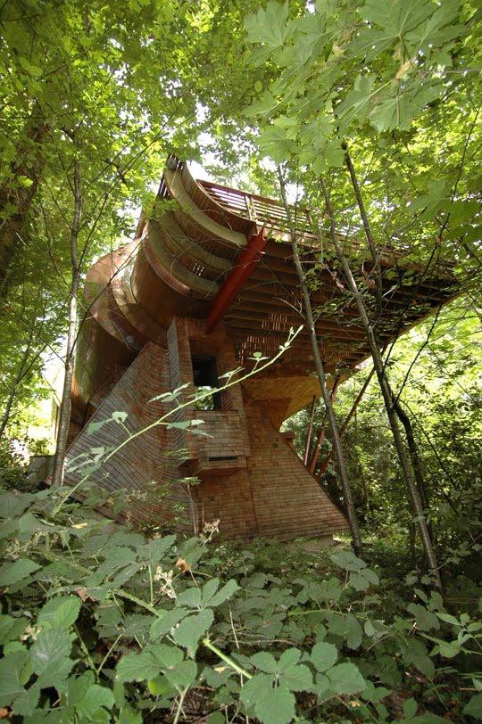 Log Home Fir Dale Ruidoso New Mexico