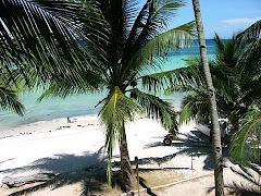A Bohol, Philippines Beach Scene