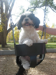 Fred Fred Likes to Swing!