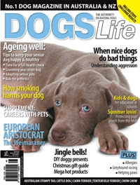 Dogs Life Magazine - Winners - Yippee!!!
