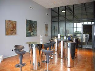 exposition chateau la tour de bessan - vignobles Marie laure lurton