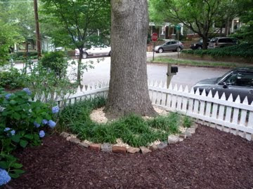 This mullet house landscaping for dummies for Landscaping for dummies