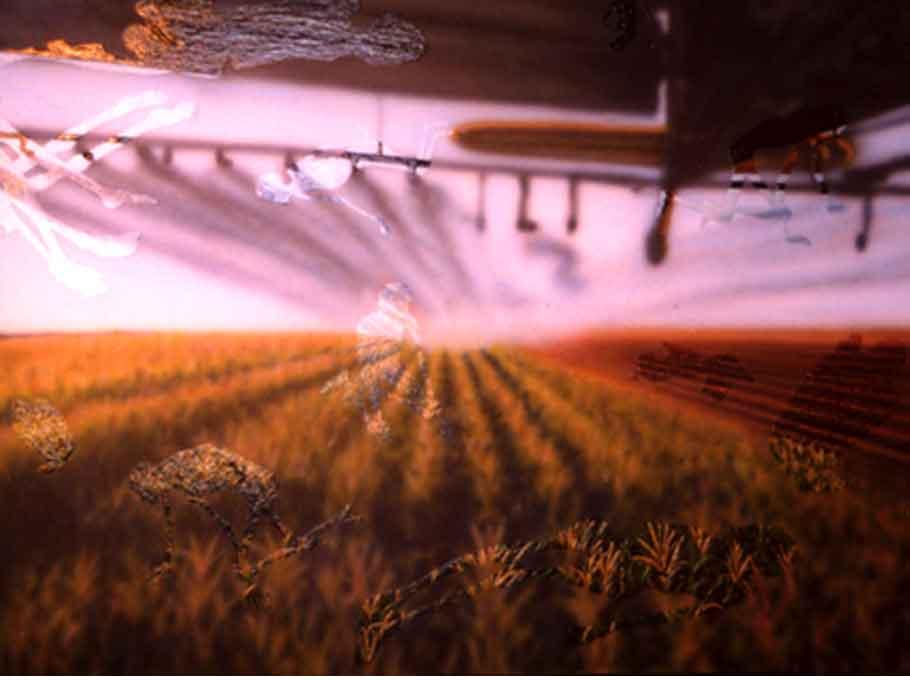 [crop_dust.680jpg]