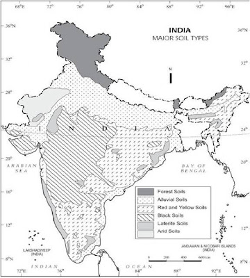 Brhectorsgeoworld c4 asoils soils of india saline and alkaline soils these soils are found in the dry and marshy areas these are locally known as bhur rehu kallar the accumulation of salts makes altavistaventures Image collections