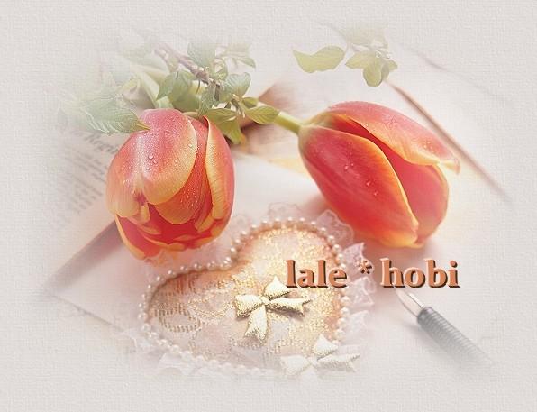 lalehobi