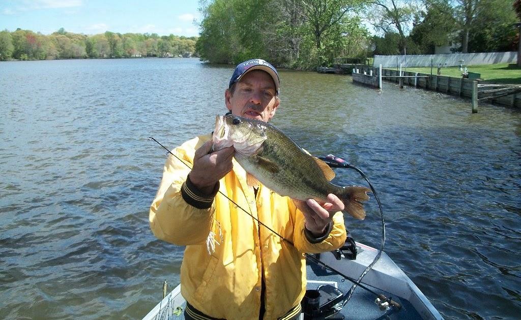 Sassafras river bass fishing new sassafras river videos for Bass fishing videos