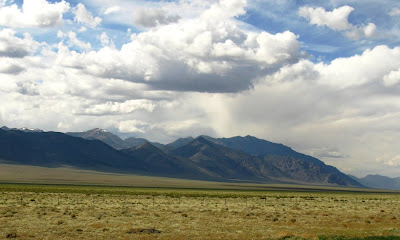 toiyabe2
