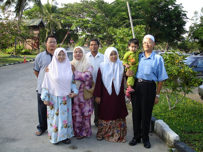 Keluarga Mirza Saidin