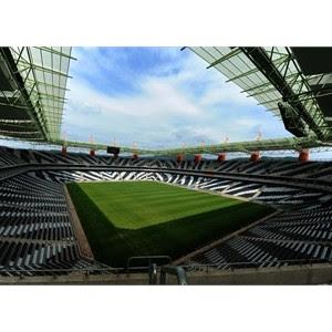 fifa 2010 stadium south africa