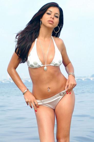 Rima Fakih , Miss USA 2010