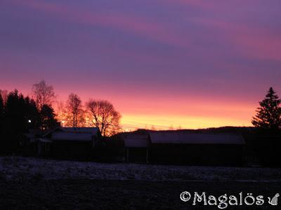 Vintermorgon