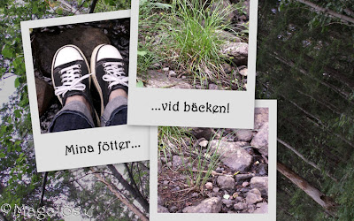 Collage vid bäckkanten.
