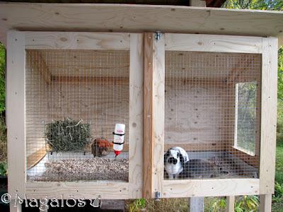 Nybyggda kaninburen som ska målas i någon färg.