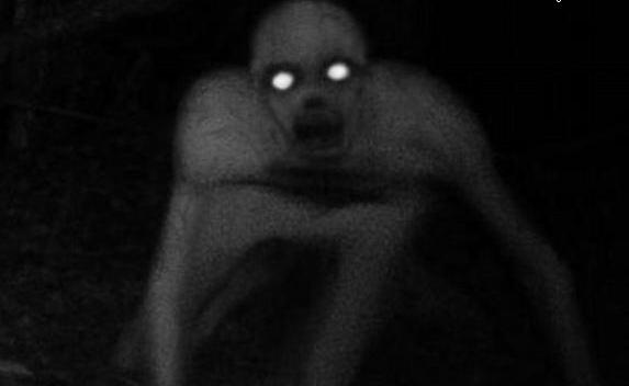 Extraña Criatura fotografiada en Lousiana  Creature-strange-in-usa