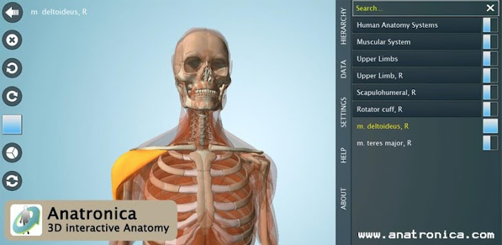 Anatomy 3D Pro - Anatronica v2.0.6 Android ( Full Version ) ~ Free ...