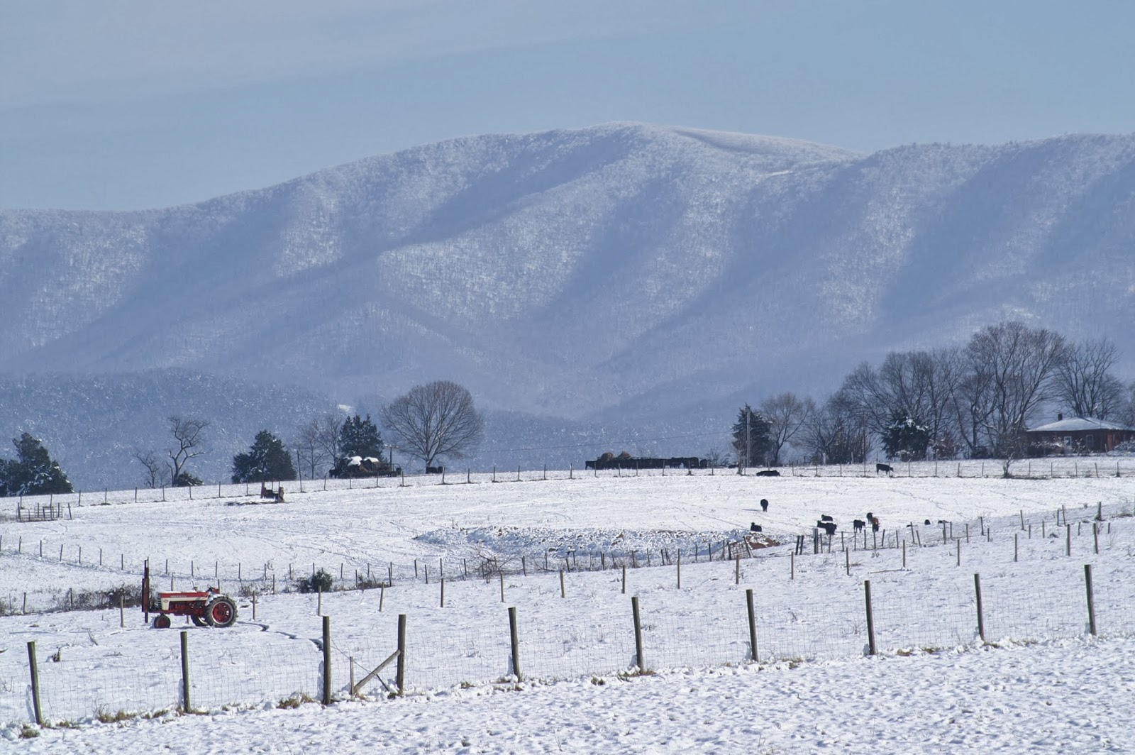 My Home Is Across The Blue Ridge Mountains 2013