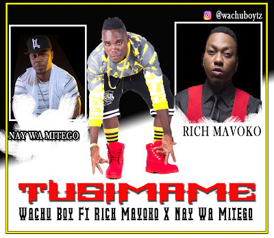 Wachu Boy Ft Rich Mavoko & Nay Wa Mitego - Tusimame
