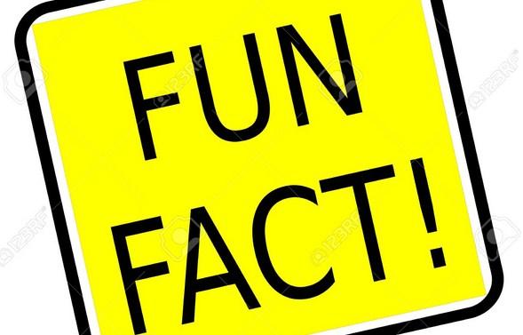 fakta tentang chelsea