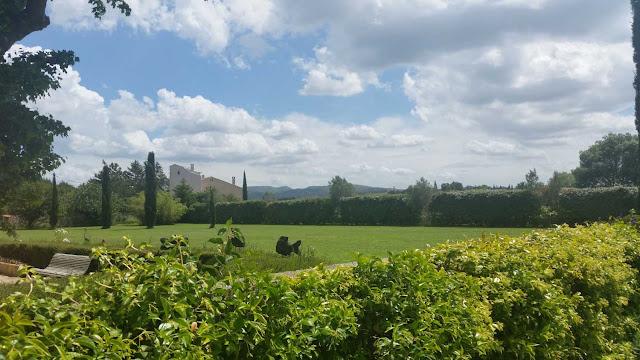 Blick auf den Zedern, Wolken und Sträucher in der Gartenanlage