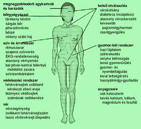 anorexiás, hogy gyorsan fogyjon