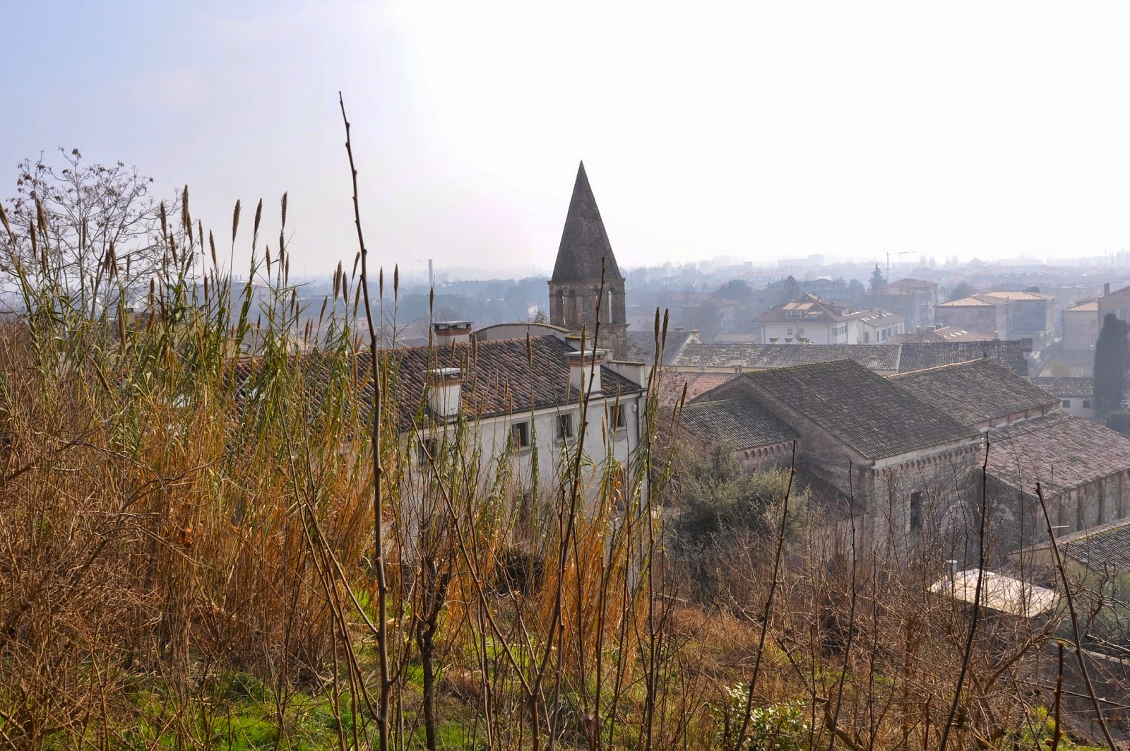 view of Monselice, Italy