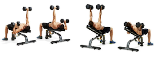 Program Latihan Fitnes bench press