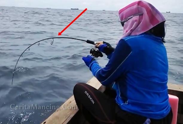 Lady Angler Strike Ikan Kaci Kaciaaan Deh Lo