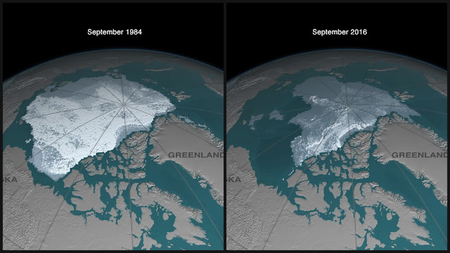 Disappearing Arctic sea ice between 1984 and 2016
