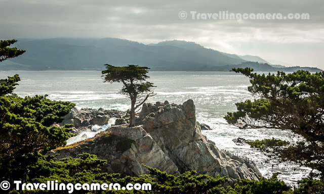 Last week we reached San Jose for some business purpose and we planned for 17 Mile Drive in Monterey in California. 17-Mile Drive is a scenic road through Pacific Grove and Pebble Beach on the Monterey Peninsula in California, which is around Pacific coastline and passes famous golf courses and mansions. Let's check out this Photo Journey to enjoy the wonderful moments while driving around 17 Mile Drive & Pebble Beach(s).It was Sunday when we hired a car from San Francisco and started with whole group from San Jose. One of the kind friends from San Jose picked his car and we started the journey towards Monterey . So two cars and 9 people. It's a wonderful drive from San Jose to Monterery, through huge agricultural land, beautiful houses, Ginger farms, Grazing grounds, Cattles, High hills, Huge mansions & Golf Courses.Part of 17 Mile Drive serves as the main road through the gated community of Pebble Beach. Inside this community, nonresidents have to pay a toll to use the road, which is $10 and it can be redeemed at Pebble Beach restaurant. Like the community, the majority of 17-Mile Drive is owned and operated by the Pebble Beach Corporation. The 17-Mile Drive is a 17-mile long scenic loop having five entrances, including one at California State Route 1 and one at Pacific Grove off Sunset Drive.Chief among the scenic attractions is the 'Lone Cypress Tree', a salt-pruned Monterey cypress (macrocarpa) tree which is the official symbol of Pebble Beach and a frequent fixture of television broadcasts from this area. In 1990 the Monterey Journal reported that Pebble Beach's lawyer, Kerry C. Smith, said 'The image of the tree has been trademarked by us,' and that it intended to control any display of the cypress for commercial purposes. The company had warned photographers that 'they cannot even use existing pictures of the tree for commercial purposes.' Other legal commentators have questioned the Pebble Beach Company's ability to invoke intellectual property laws to restrict others' use of such imagesBeaches around Pacific ocean were amazing, with lots of lovely birds flying around. When we enter into the 17 Mile drive, administration office at gate hands over a catalog with all points for tourist interest on the way. Roads have proper guiding information which makes the drive more enjoyable. On this drive, there are huge mansions with lot of space all around and a beautiful golf course, which touches Pacific Ocean.Man looking at Lone Cypress Tree around Pacific Ocean, which is one of the main attractions at 17 Mile Drive in MOntreryA photograph shot inside the 17 Mile drive only.Bird sitting on one of the rocks around shoreline of Pacific Ocean. There is a point on the way, where lot of birds, squirrels & Seals can be seen. They are huge number and people love to spend some time around this placAfter we finished the drive inside 17 Mile drive region, we went to an Indian restaurant in downtown for lunch. Everyone was happy to have great lunch here and this was best place where we got pure Indian food without any changes in the flavor.There were hundreds of healthy squirrels roaming around the shoreline of Pacific Ocean and they were quite comfortable for the offerings by tourists there. Here is a photograph showing a fat squirrel comfortable accepting the offers to eat something.