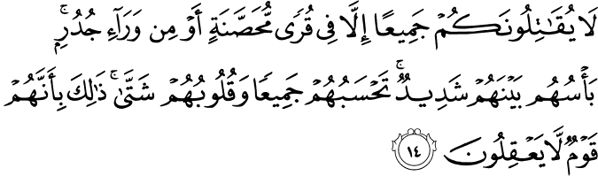Surat Al-Hasyr Ayat 14
