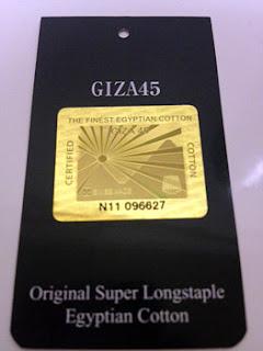 GIZA45