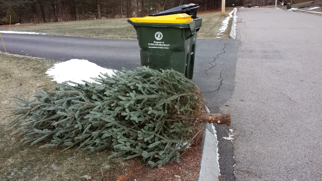 Christmas tree pickup scheduled for week of Jan 5th