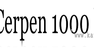Contoh Cerpen 1000 Kata Terbaru Kata Ilmu